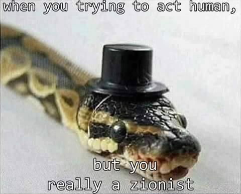 zionistjewisraelsnake